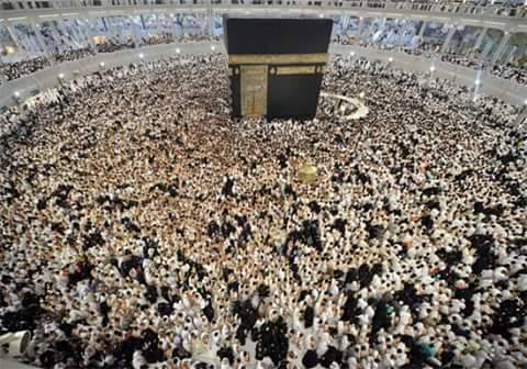 Coordinating Council of pilgrims inside 4 programs to raise the prices of the Ministry of Hajj